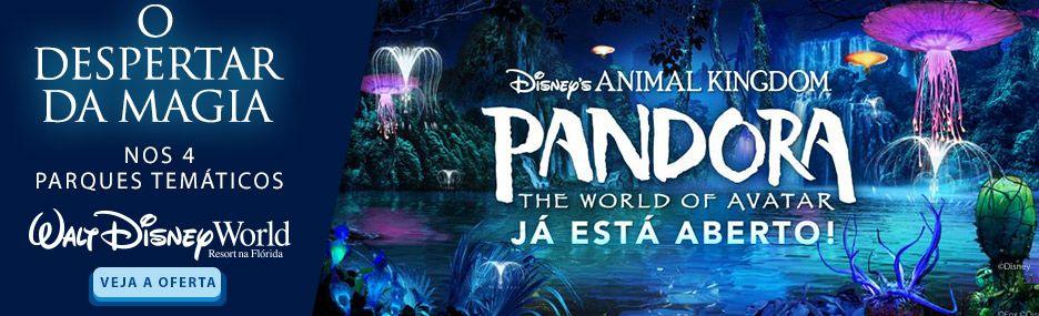 Banner Main - Walt Disney World